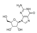 Picture for category Nucleosides